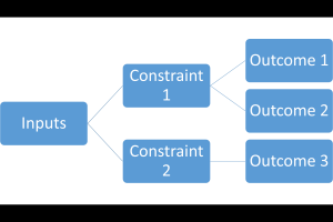 Outcomes and Constraints